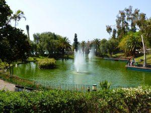 parque_de_santa_catarina_funchal